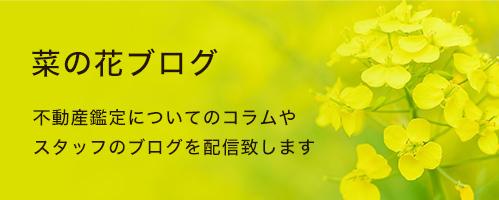 菜の花ブログ